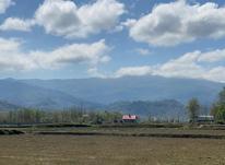 2 هکتار زمین باغی مناسب سرمایه گذاری در تموشل لاهیجان در شیپور-عکس کوچک