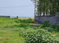 فروش زمین مسکونی ساحلی زیر قیمت در شیپور-عکس کوچک