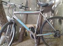 فروش فوری دوچرخه 26 در شیپور-عکس کوچک