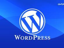 طراح وب سایت مسلط به ورد پرس در شیپور