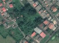 فروش زمین مسکونی 270 متر در رودسر در شیپور-عکس کوچک