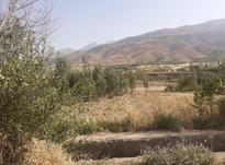 750 متر زمین مناسب خانه باغ در شیپور-عکس کوچک