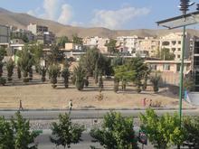 فروش زمین مسکونی 200 متر محک در شیپور