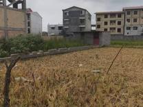 فروش زمین مسکونی 225 متر در تالش در شیپور