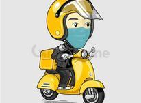 پیک موتوری هستم جویای کار در شیپور-عکس کوچک