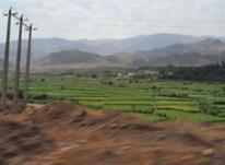 زمین 1000متری بافت اروس آباد در شیپور-عکس کوچک