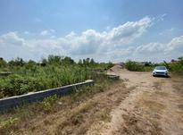 فروش زمین مسکونی اکازیون در شیپور-عکس کوچک