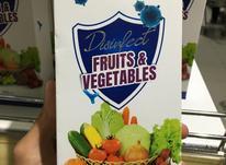 گند زدای میوه و سبزیجات در شیپور-عکس کوچک