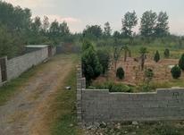 زمین 350 متری چسبیده به بافت بهترین موقعیت در سرخرود  در شیپور-عکس کوچک