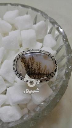 انگشتر شجر قائن دست ساز نصیری زنجان در گروه خرید و فروش لوازم شخصی در زنجان در شیپور-عکس1