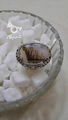انگشتر شجر قائن دست ساز نصیری زنجان در گروه خرید و فروش لوازم شخصی در زنجان در شیپور-عکس2