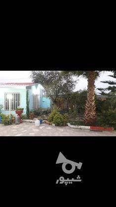فروش خونه باغ در کله بست فاصله اندک با دریا در گروه خرید و فروش املاک در مازندران در شیپور-عکس2