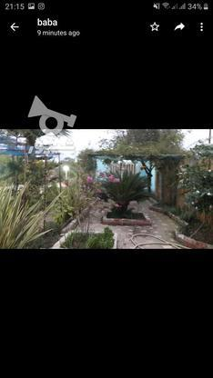 فروش خونه باغ در کله بست فاصله اندک با دریا در گروه خرید و فروش املاک در مازندران در شیپور-عکس3