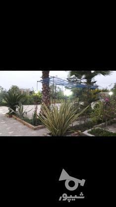 فروش خونه باغ در کله بست فاصله اندک با دریا در گروه خرید و فروش املاک در مازندران در شیپور-عکس6