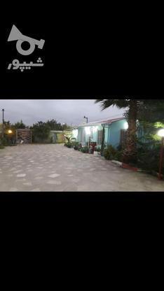 فروش خونه باغ در کله بست فاصله اندک با دریا در گروه خرید و فروش املاک در مازندران در شیپور-عکس7