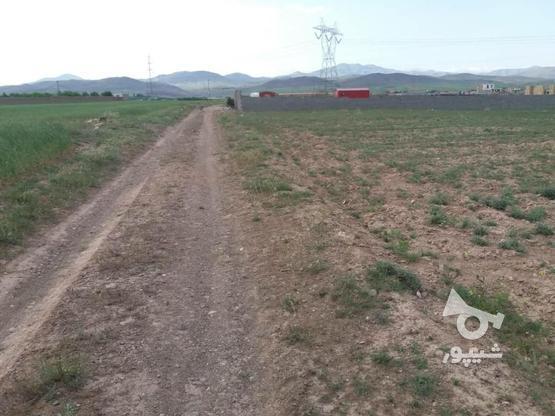 زمین 800متری چسبیده به بافت اروس آباد در گروه خرید و فروش املاک در قزوین در شیپور-عکس2