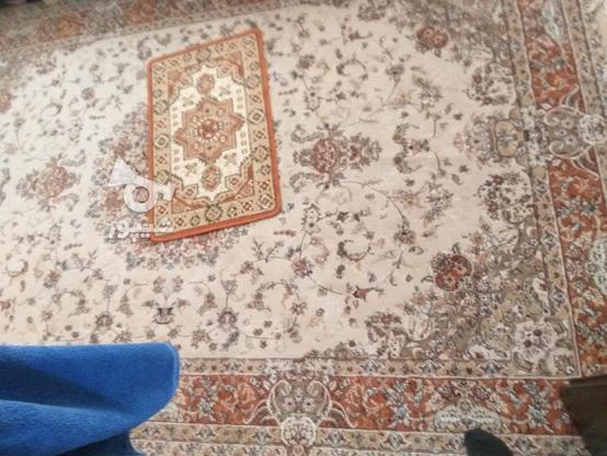 سه عددفرش تمیز مشابه هم در گروه خرید و فروش لوازم خانگی در تهران در شیپور-عکس3