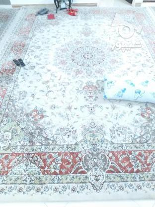 سه عددفرش تمیز مشابه هم در گروه خرید و فروش لوازم خانگی در تهران در شیپور-عکس2