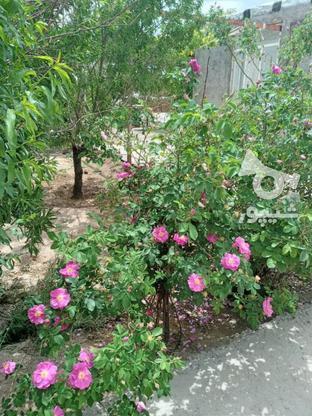 فروش خانه ویلایی در گروه خرید و فروش املاک در خراسان رضوی در شیپور-عکس3