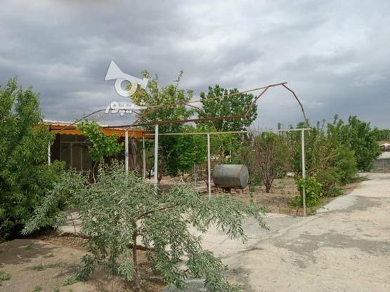 فروش خانه ویلایی در گروه خرید و فروش املاک در خراسان رضوی در شیپور-عکس4