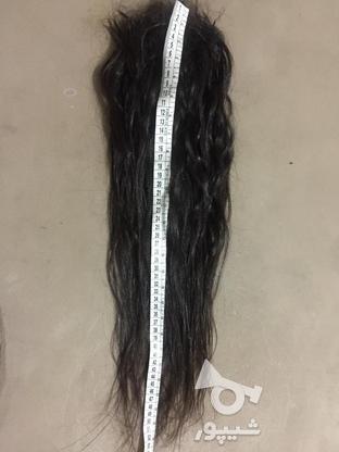 موی طبیعی سرکراتین شده در گروه خرید و فروش لوازم شخصی در مازندران در شیپور-عکس2