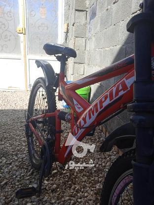 دوچرخه المپیا در گروه خرید و فروش ورزش فرهنگ فراغت در همدان در شیپور-عکس2
