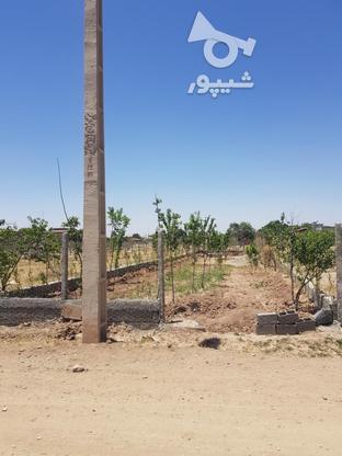 زمین ویلایی فوری در گروه خرید و فروش املاک در البرز در شیپور-عکس1