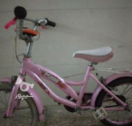فوری دوچرخه صورتی  در گروه خرید و فروش ورزش فرهنگ فراغت در تهران در شیپور-عکس1