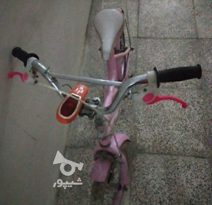 فوری دوچرخه صورتی  در گروه خرید و فروش ورزش فرهنگ فراغت در تهران در شیپور-عکس5