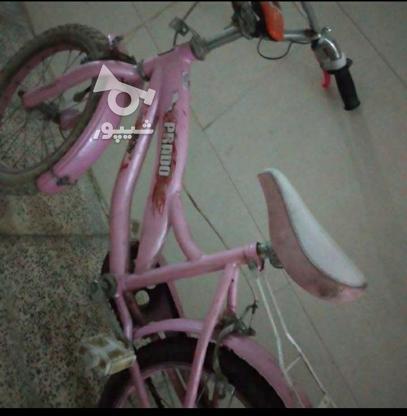فوری دوچرخه صورتی  در گروه خرید و فروش ورزش فرهنگ فراغت در تهران در شیپور-عکس4