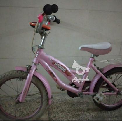 فوری دوچرخه صورتی  در گروه خرید و فروش ورزش فرهنگ فراغت در تهران در شیپور-عکس2