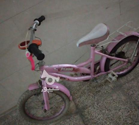 فوری دوچرخه صورتی  در گروه خرید و فروش ورزش فرهنگ فراغت در تهران در شیپور-عکس3