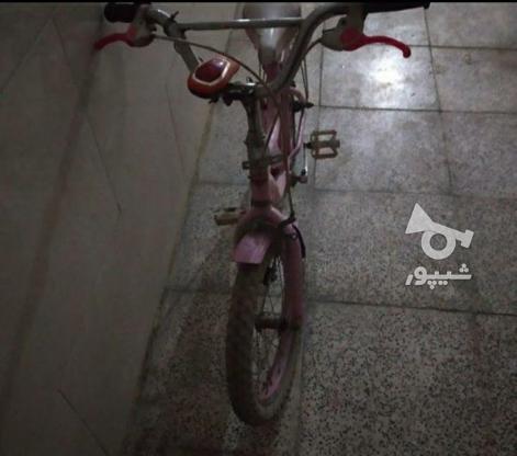 فوری دوچرخه صورتی  در گروه خرید و فروش ورزش فرهنگ فراغت در تهران در شیپور-عکس6