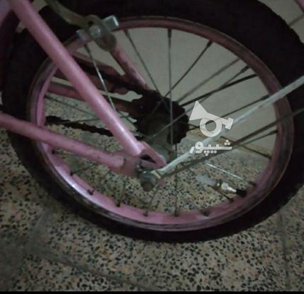فوری دوچرخه صورتی  در گروه خرید و فروش ورزش فرهنگ فراغت در تهران در شیپور-عکس7