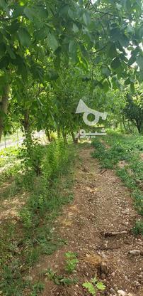 خریدار زمین در شهرکردهستم در گروه خرید و فروش املاک در چهارمحال و بختیاری در شیپور-عکس4
