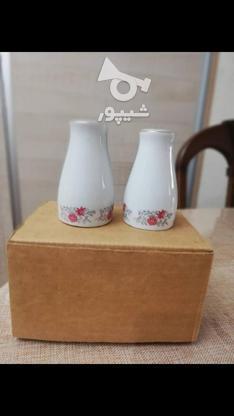 نمکدان چینی در گروه خرید و فروش لوازم خانگی در آذربایجان شرقی در شیپور-عکس1