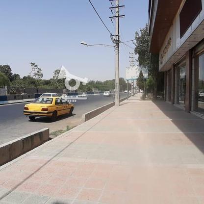 اجاره مغازه 250 متر تجاری در شهریار در گروه خرید و فروش املاک در تهران در شیپور-عکس4