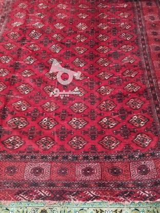فروش قالی دستی در گروه خرید و فروش لوازم خانگی در خراسان رضوی در شیپور-عکس1
