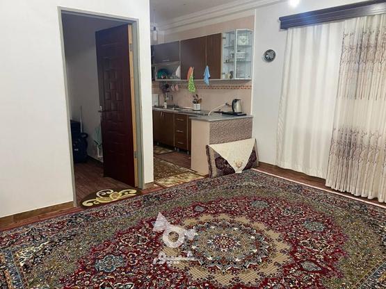 فروش خانه ویلایی فریم در گروه خرید و فروش املاک در مازندران در شیپور-عکس5