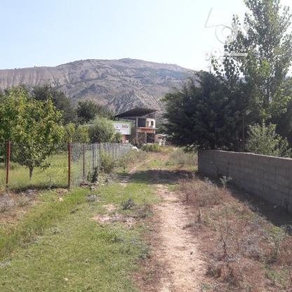 قطعه 1500متری واقع در کجور در گروه خرید و فروش املاک در مازندران در شیپور-عکس3