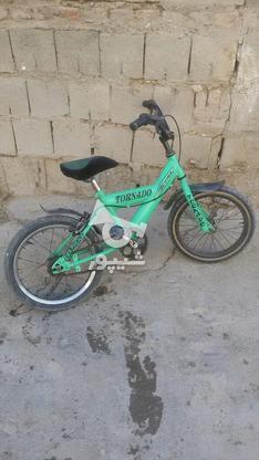 دوچرخه 20 باضمانت در گروه خرید و فروش ورزش فرهنگ فراغت در آذربایجان غربی در شیپور-عکس3