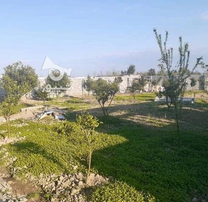 فروش زمین مسکونی 200 متر در محمودآباد در گروه خرید و فروش املاک در مازندران در شیپور-عکس6