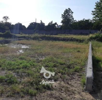 فروش زمین مسکونی 200 متر در محمودآباد در گروه خرید و فروش املاک در مازندران در شیپور-عکس4