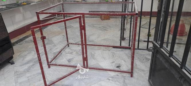 قفس بزرگ تمیز در گروه خرید و فروش ورزش فرهنگ فراغت در گلستان در شیپور-عکس1