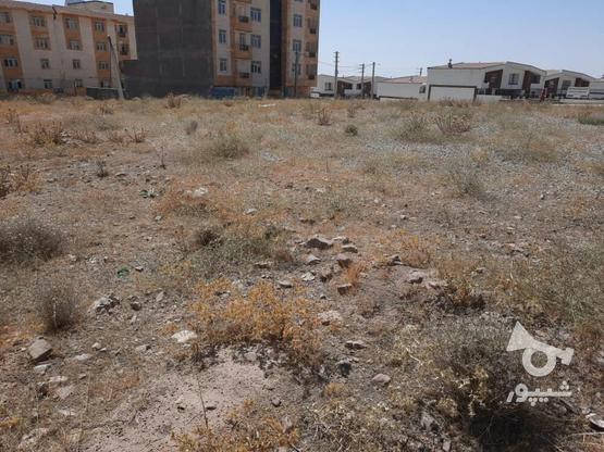 زمین مسکونی شهر جدید هشتگرد در گروه خرید و فروش املاک در البرز در شیپور-عکس5