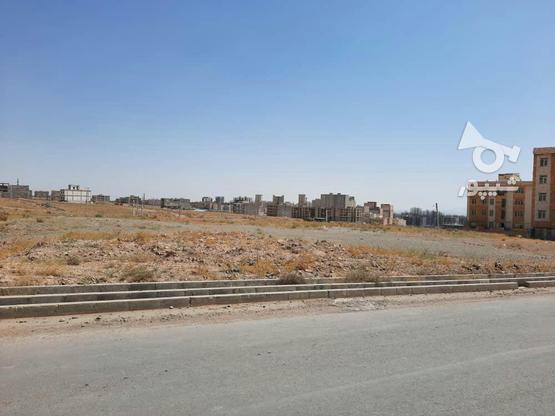 زمین مسکونی شهر جدید هشتگرد در گروه خرید و فروش املاک در البرز در شیپور-عکس1