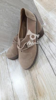 جدیدترین کفشهای پاییزه در گروه خرید و فروش لوازم شخصی در تهران در شیپور-عکس4