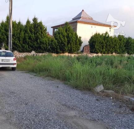 فروش زمین مسکونی در متراژهای از 200 متر   در گروه خرید و فروش املاک در مازندران در شیپور-عکس6