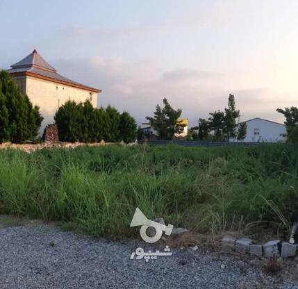 فروش زمین مسکونی در متراژهای از 200 متر   در گروه خرید و فروش املاک در مازندران در شیپور-عکس3