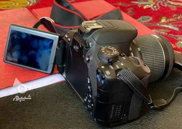 دوربین عکاسی وفلم برداری کانون D700 . در گروه خرید و فروش لوازم الکترونیکی در خراسان رضوی در شیپور-عکس5